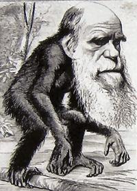 gott und die evolution
