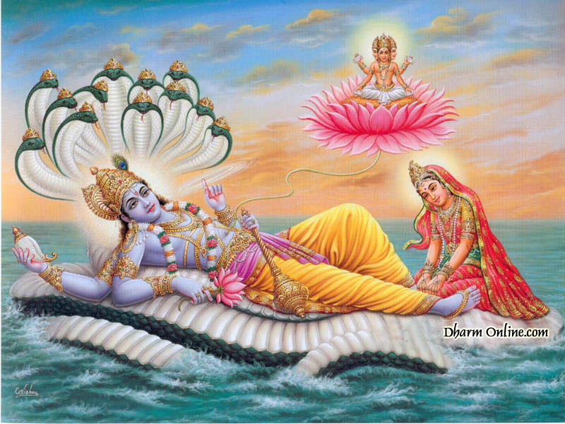 The Divine Lotus Flower